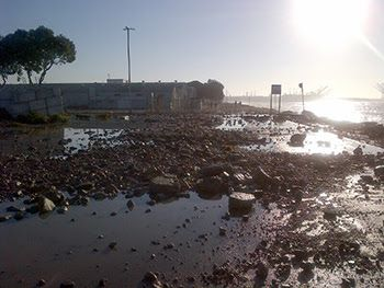 Large waves powered by Hurricane Marie tossed rocks onto the roadway at the Port of Long Beach.