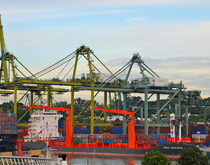 The port of Singapore, pictured, is just one of the many transshipment hubs that can win or lose big on the whims of vessel-sharing agreements.