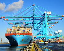 The synergies APM Terminals provides for Maersk Line make it unlikely the Maersk Group will choose to divest itself of its terminal operating arm.