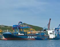 DP World seeks stake in Russia's Fesco