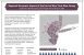 Thumbnail of New York-New Jersey port infographic