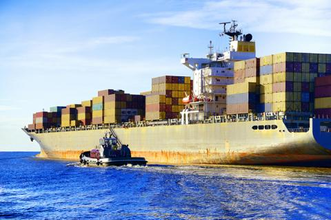 Few shippers see prices going up substantially this year, and some say the rates won't change until at least April, when the new carrier alliances take effect.
