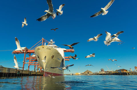 Ships at berth at the Port of Long Beach, such as the one pictured, are able to plug into shore-supplied power, which is known as cold-ironing, as part of the port's pollution reduction efforts.